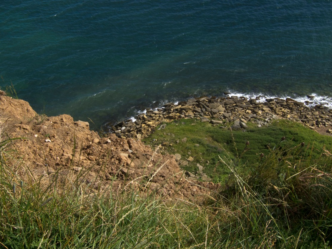 Filey cliff top