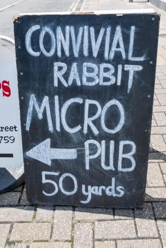 Convivial Rabbit-1