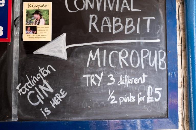 Convivial Rabbit-2