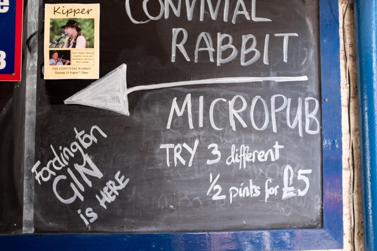 Convivial Rabbit-2