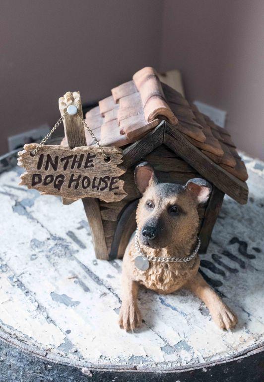 Doghouse-11